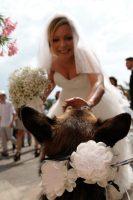 Athena_Dog_Sitter_per_Matrimoni_3.jpg