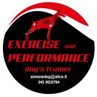 exercise-and-performance-dogs-trainer.jpg