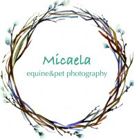 Micaela_equine-pet_photography