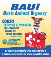 basic-animal-urgency-salvamento-academy-3.jpg