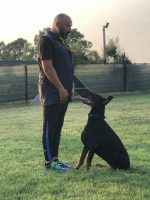 exercise-and-performance-dogs-trainer-4.jpg