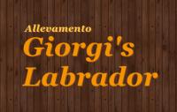 logo giorgi's.png