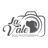 la-vale-dog-photography.png
