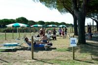 Spiaggia-Romea-Lido-delle-Nazioni-Ferrara-2.jpg