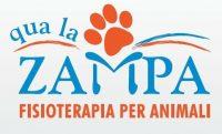 Qua-la-Zampa -Centro-di-fisioterapia-per-animali.JPG