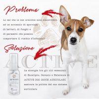 officine-cosmeceutiche-cosmetici-naturali-per-animali-4.jpg
