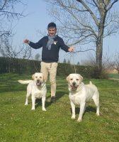 Labradors_Land_Allevamento_Labrador_Retriever_di_casa_Picca_2.jpg