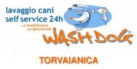 wash dog presentazione TOR.png