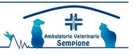 Ambulatorio_Veterinario_Sempione_Torino.jpg