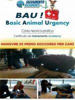 basic-animal-urgency-salvamento-academy-2.jpg