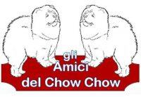 Gli_Amici_Del_Chow_Chow.jpg