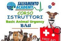 basic-animal-urgency-salvamento-academy-1.jpg