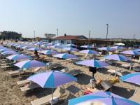 ISLAMORADA-Dog Beach-3.JPG