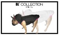 BL_COLLECTION_frenchie copy.jpg