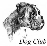 dog-club-toelettatura-cani-a-palermo.jpg