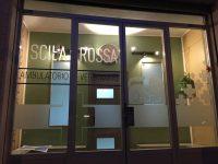 Scilla_Rossa_Ambulatorio_Veterinario_Palermo_1.jpg