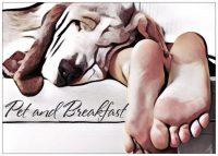 Pet_and_Breakfast.jpg