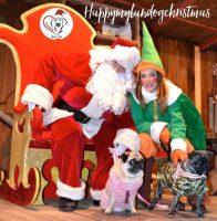 happy-mylandog-christmas.jpg