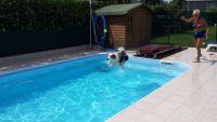 DOGS'_SPLASH_AND FUN_Centro_Cinofilo_e_Piscina_per_Cani_2.jpg