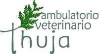 Thuja_Ambulatorio_Veterinario_Reggio_Calabria.png