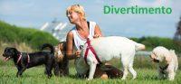 DOGSY_Asilo_per_Cani_e_Dog_Sitting_Venezia_3.jpg