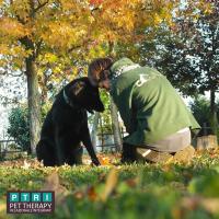 Pet_Therapy_Relazionale_Integrata-Scuola_per_Operatori_di_Pet_Therapy_2