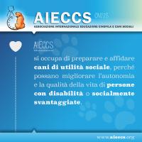 AIECCS_1.png