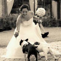 Athena_Dog_Sitter_per_Matrimoni_1.jpg