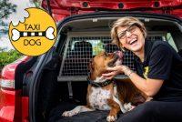taxidog-1.jpg