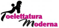 Toelettatura_Moderna_Roma_Centro_Estetico_per_Cani_di_Nelly_Oliva.png