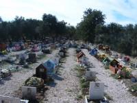 PARCO-DEGLI-AFFETTI-I-DUE-TRULLI-Cimitero-per-Cani-Bari-1.jpg