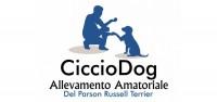 allevamento-cicciodog-ilmiocane (1).jpg