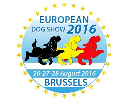 european_dog_show_2016