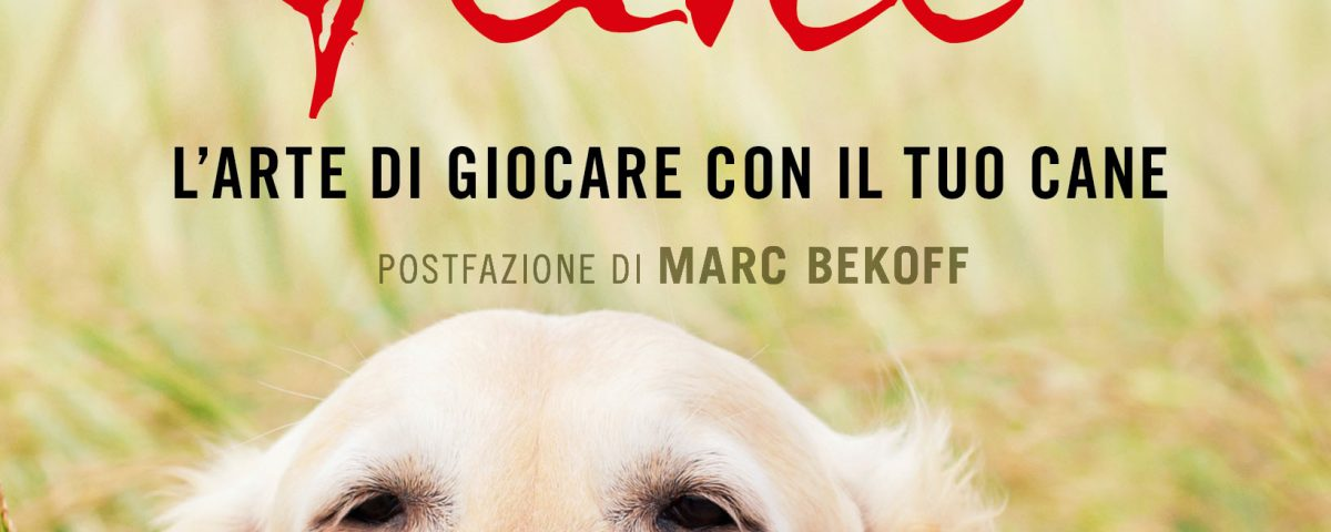 Un Cuore Felice L Arte Di Giocare Con Il Tuo Cane Il Mio Cane