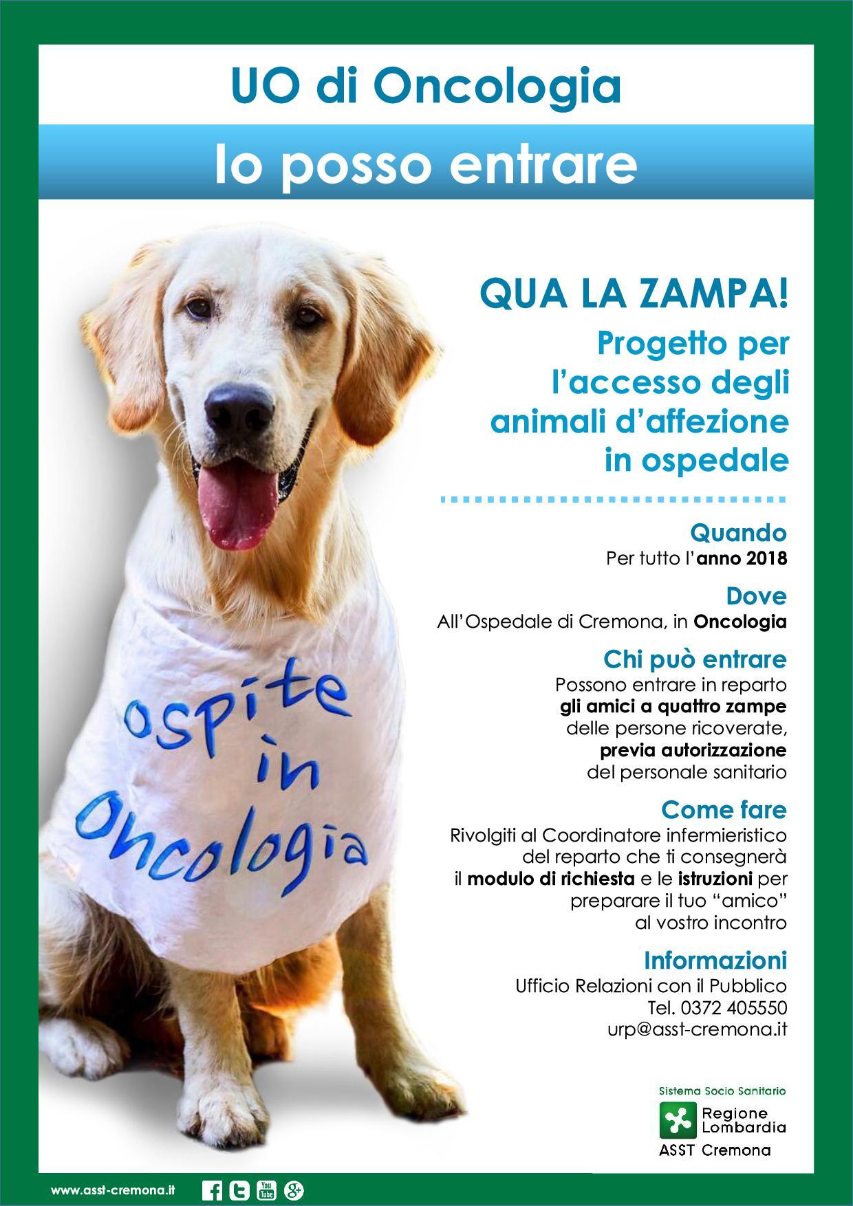 Rivenditori Selezionati Il Mio Cane Portale Sui Caniil Mio Cane Portale Sui Cani