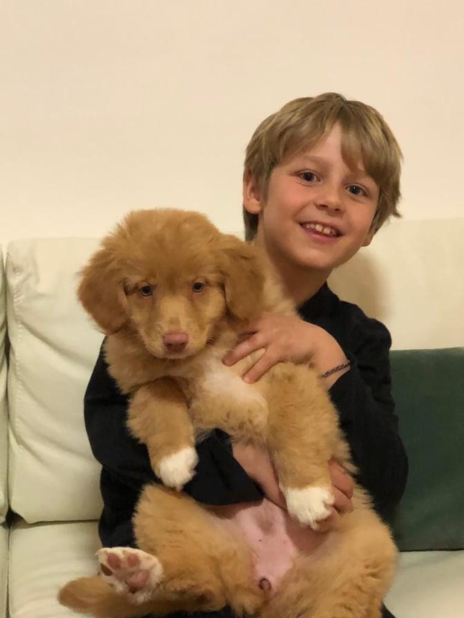 AICAD-il-mio-cane