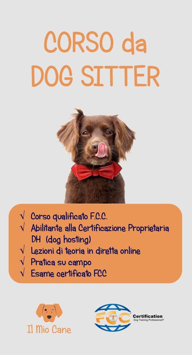 corso-da-dog-sitter