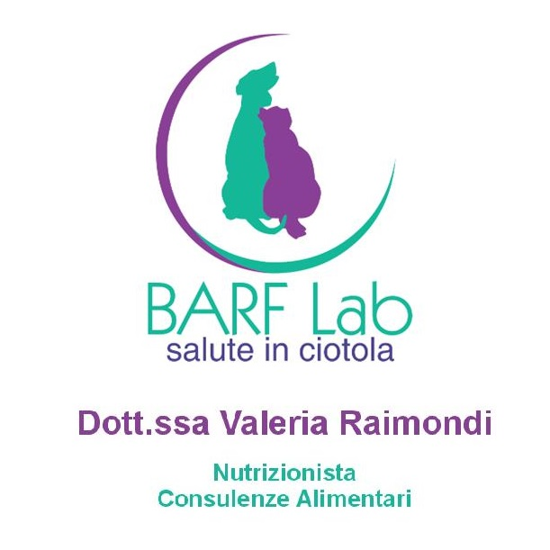 Barf_Lab_valeria_raimondi