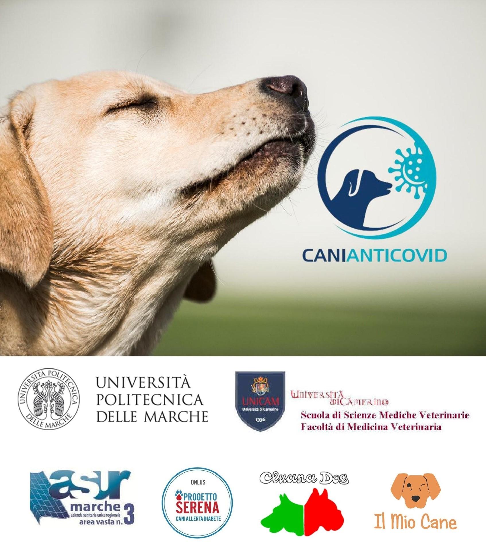 progetto-cani-anti-covid